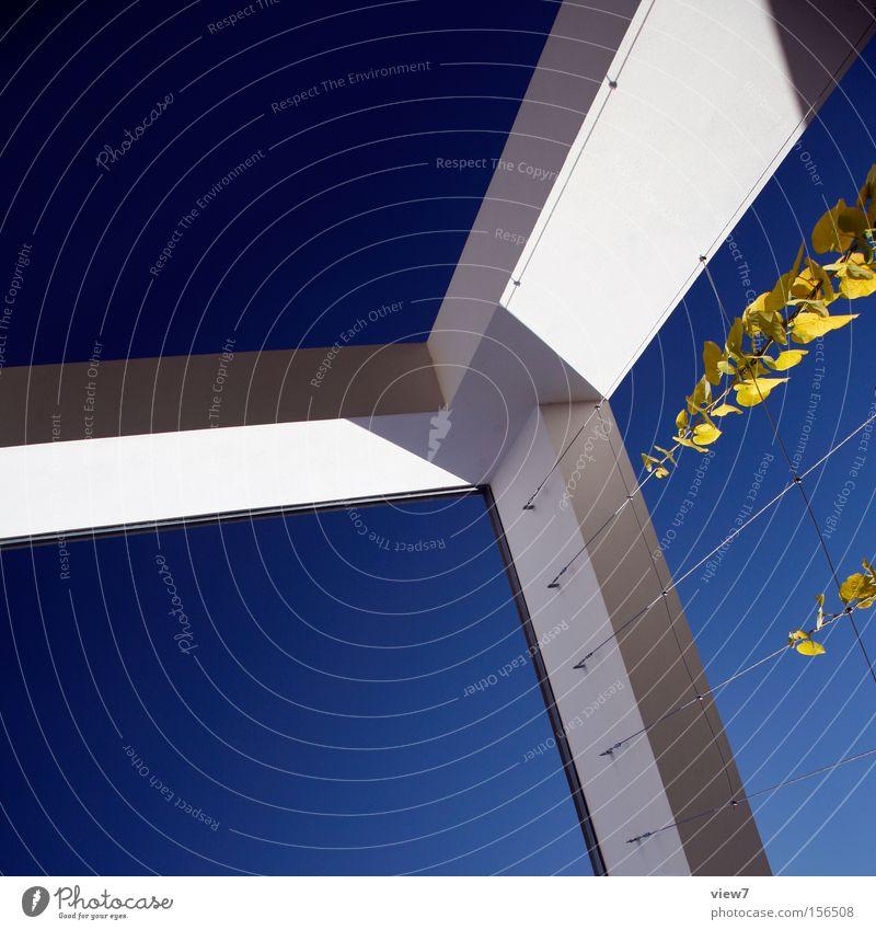 Architektur drei. Himmel Wand Mauer Glas Beton modern Ordnung Ecke bauen Weimar Bauhaus