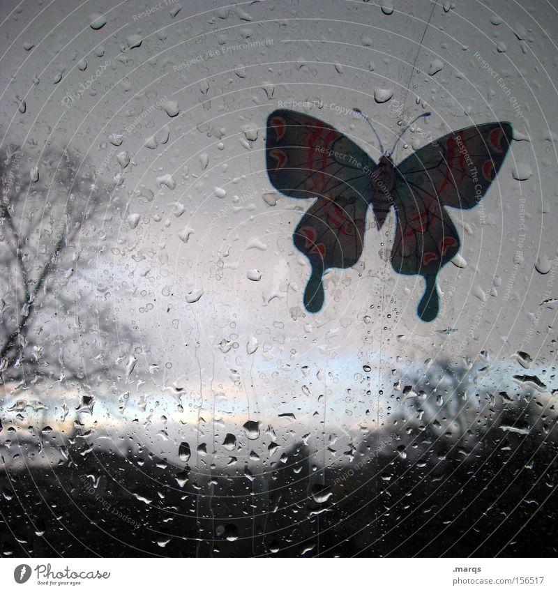 Bote Baum Tier dunkel Fenster Landschaft grau Traurigkeit Regen Horizont Wetter Glas fliegen nass Wassertropfen Sträucher Kitsch