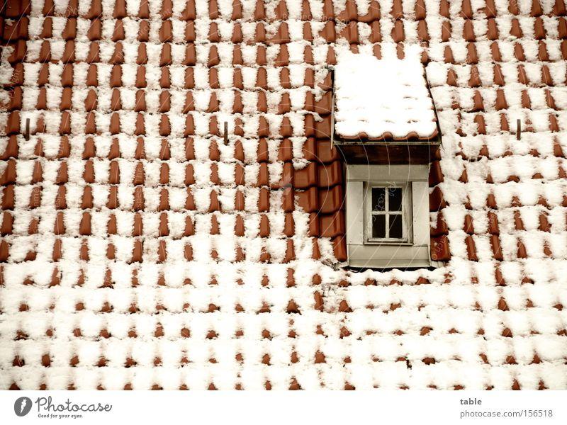 Dachfenster alt weiß rot Winter Einsamkeit kalt Schnee Fenster Glas verrückt Dorf Handwerk historisch Fensterscheibe Dachziegel