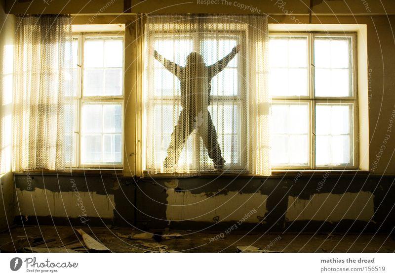 FENSTERPUTZEN Mann schön Fenster Freiheit Linie hell Raum ästhetisch stehen Reinigen verfallen Geometrie mystisch Gardine Held X-Men