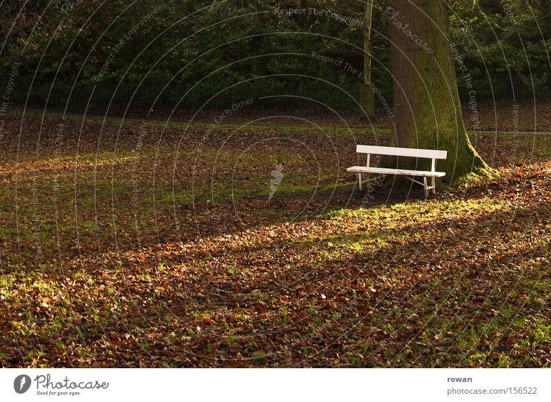 ruhepunkt ruhig Blatt Erholung Herbst Garten Park Pause Bank stagnierend Parkbank innehalten