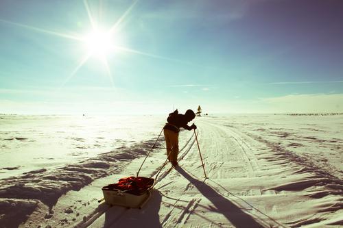 På tur i vinterferien Mensch Jugendliche Junge Frau Sonne Wege & Pfade Schnee Sport Glück Freiheit Zufriedenheit Kraft Lebensfreude einzigartig Abenteuer