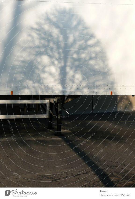 Mit Stamm-Baum Anhänger Schatten Baumschatten Autobahnauffahrt Winter Baumstamm Kontrast kaputt Parkplatz LKW-Anhänger Ladezone Doppelschatten Knickschatten