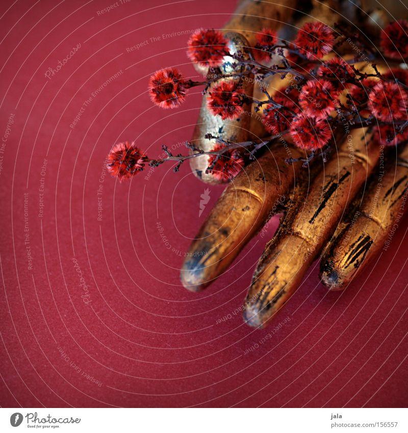 flowers in buddha's hand Buddha Hand Frieden gestikulieren Zeichen Blume Quaste rot gold Asien Fernost Buddhismus Religion & Glaube Dekoration & Verzierung