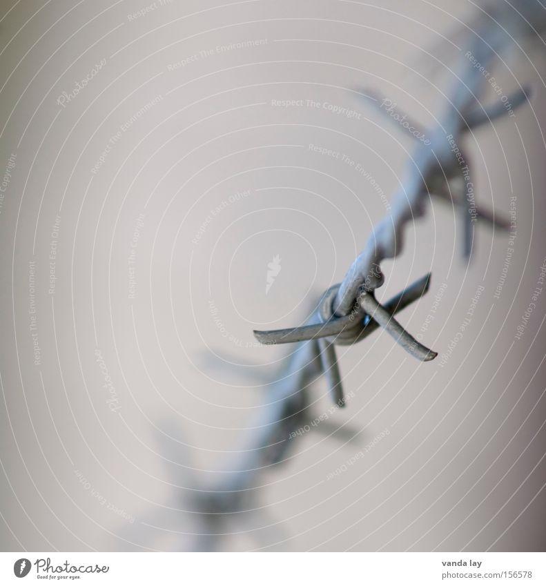 Amnesty Freiheit Metall Macht gefährlich Frieden bedrohlich Metallwaren Zaun Krieg gefangen Gesetze und Verordnungen Justizvollzugsanstalt Draht Haftstrafe Stacheldraht Folter