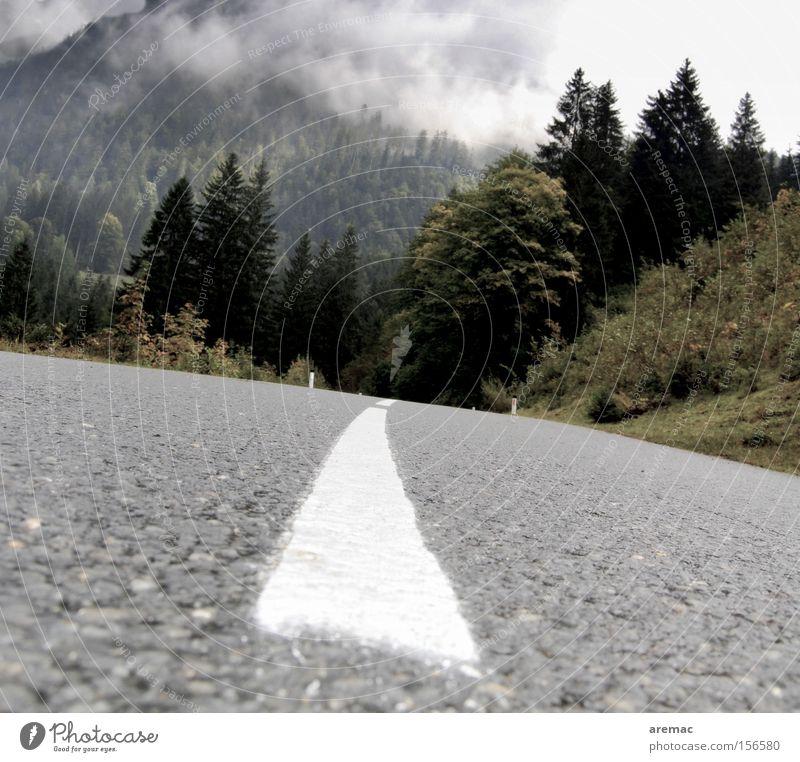 Schräglage Straße Linie Asphalt Landschaft Wolken Wald fahren Ferien & Urlaub & Reisen Berge u. Gebirge Österreich Verkehrswege Herbst Neigung