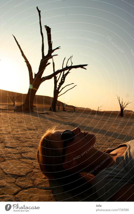 Licht und Schatten Wüste Baum trocken Zweig Ast Tod Namibia Einsamkeit Dead Vlei Sonnenuntergang Umweltverschmutzung Afrika