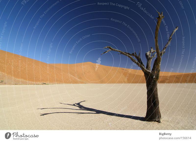 Sand Afrika Wüste Namibia Namib Sesriem Dead Vlei