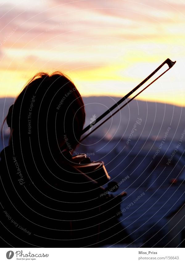 Klangfarben Winter Spielen Musik träumen Stimmung Horizont Romantik Sehnsucht Leidenschaft Ton Musikinstrument Musiker verträumt Geige