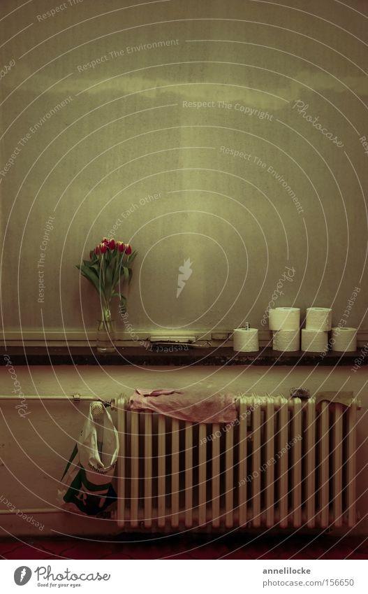 Toilettenidylle alt Fenster trist Bad Toilette Toilette verfallen obskur Blumenstrauß DDR Tulpe Nostalgie Heizkörper Osten Heizung Fensterbrett