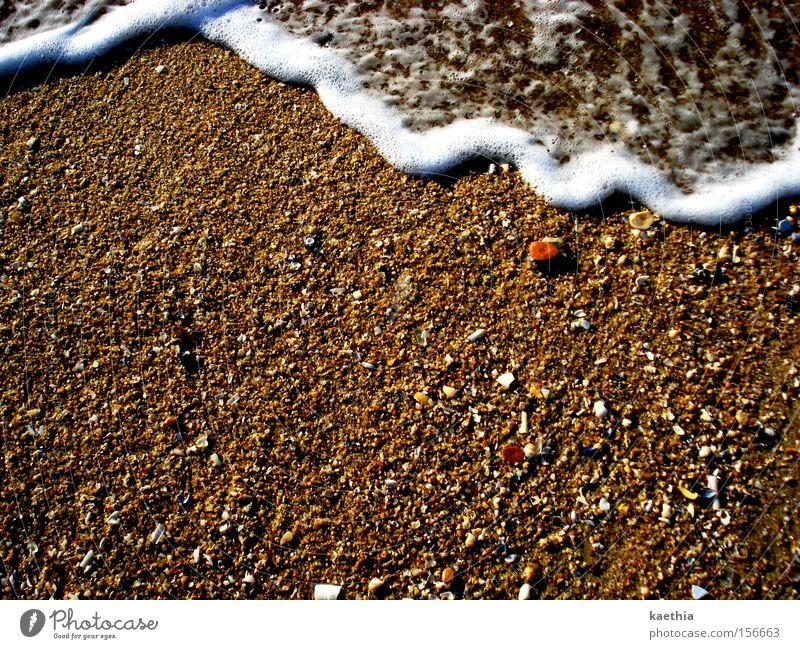 ...und schon wieder weg! Wasser Meer Sommer Strand Bewegung Sand braun Wellen Küste Insel Reisefotografie Spanien Muschel Schaum Rauschen sprudelnd