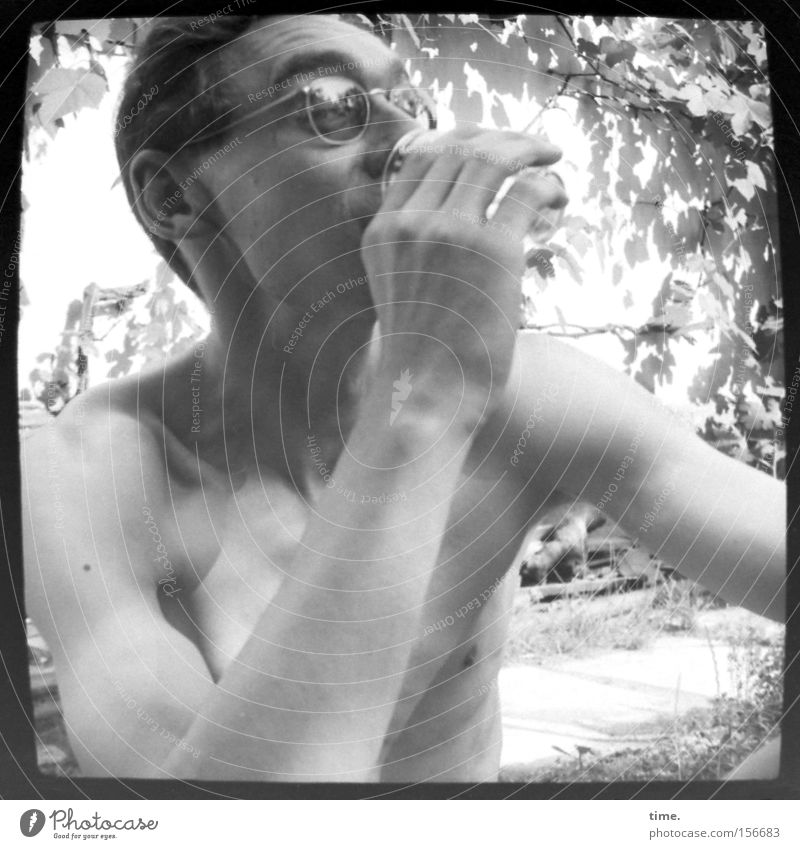 Prost Jungs! Mann Natur Blatt Erwachsene maskulin Getränk trinken Brille dünn beobachten kurzhaarig Zweige u. Äste Nackte Haut