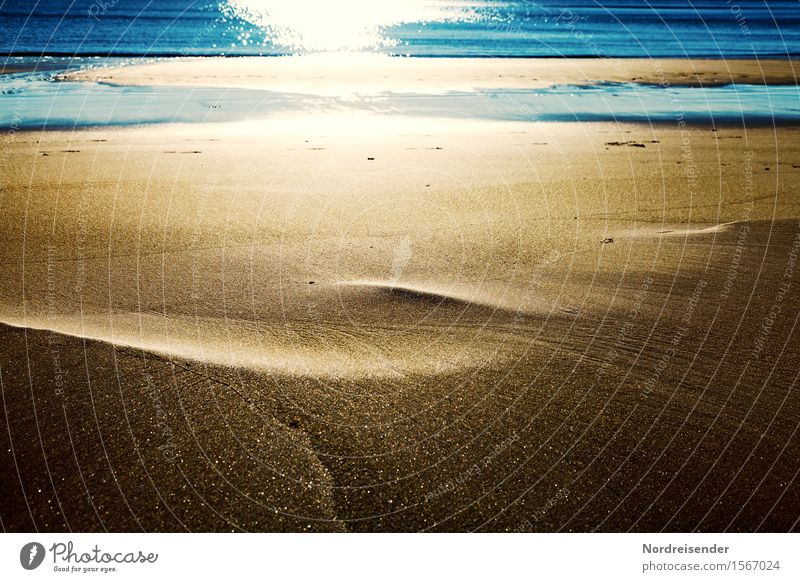Goldsand trifft stahlblaues Wasser Ferien & Urlaub & Reisen Sommerurlaub Meer Insel Urelemente Sand Sonne Schönes Wetter Strand Nordsee Ostsee glänzend