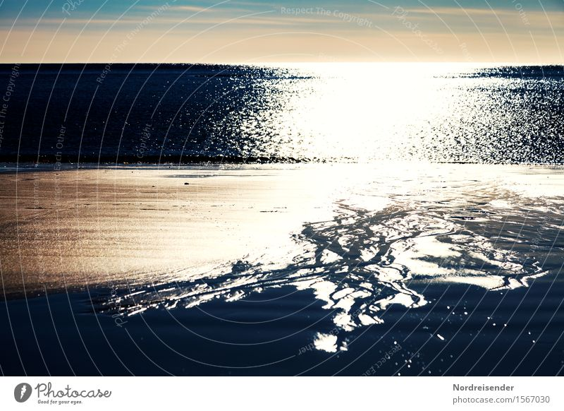 Ein Abend am Meer Strand Natur Landschaft Urelemente Sand Wasser Sonne Sonnenaufgang Sonnenuntergang Sommer Schönes Wetter Nordsee Ostsee Schifffahrt leuchten