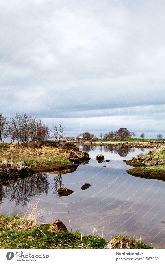 Küstenlandschaft Meer Natur Landschaft Urelemente Luft Wasser Wolken Frühling Klima schlechtes Wetter Regen Baum Gras Sträucher Flussufer maritim ruhig