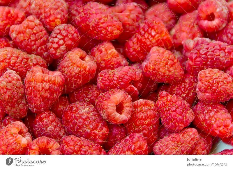 Frische rote Himbeere des Hintergrundes Lebensmittel Vegetarische Ernährung frisch Himbeeren süß Beeren Gesundheit roh organisch Gartenmaterial Farbfoto