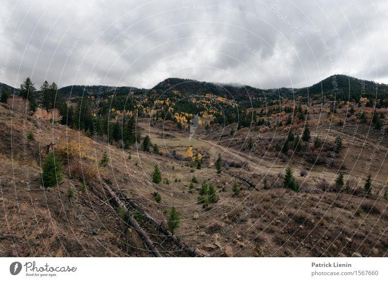 Westliches Colorado Ferien & Urlaub & Reisen Tourismus Abenteuer Freiheit Expedition Berge u. Gebirge wandern Natur Landschaft Pflanze Urelemente Erde Himmel
