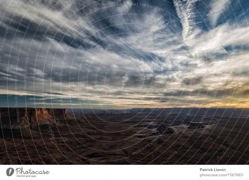 Canyonlands Leben harmonisch Wohlgefühl Zufriedenheit Ferien & Urlaub & Reisen Tourismus Ausflug Abenteuer Ferne Freiheit Sommer Berge u. Gebirge Umwelt Natur