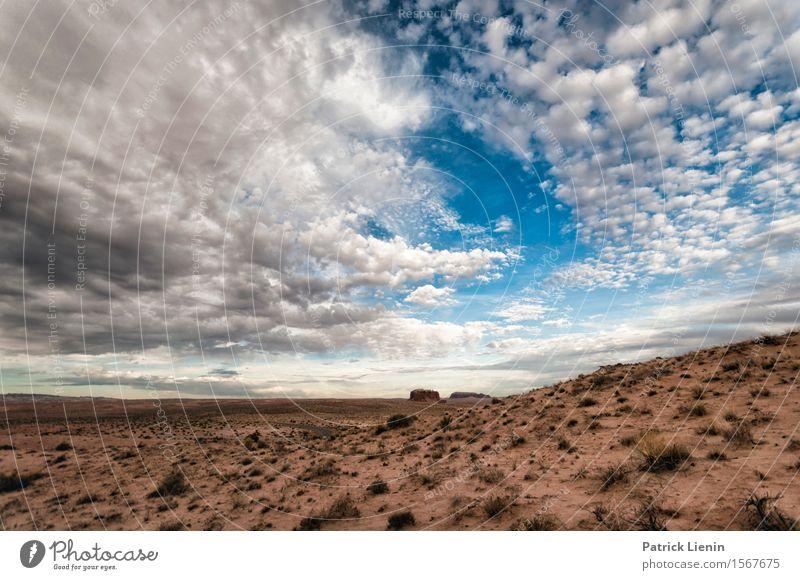 Himmel Natur Ferien & Urlaub & Reisen Pflanze blau Sommer Landschaft Wolken Umwelt Wärme Felsen Tourismus Wetter Erde Ausflug Klima
