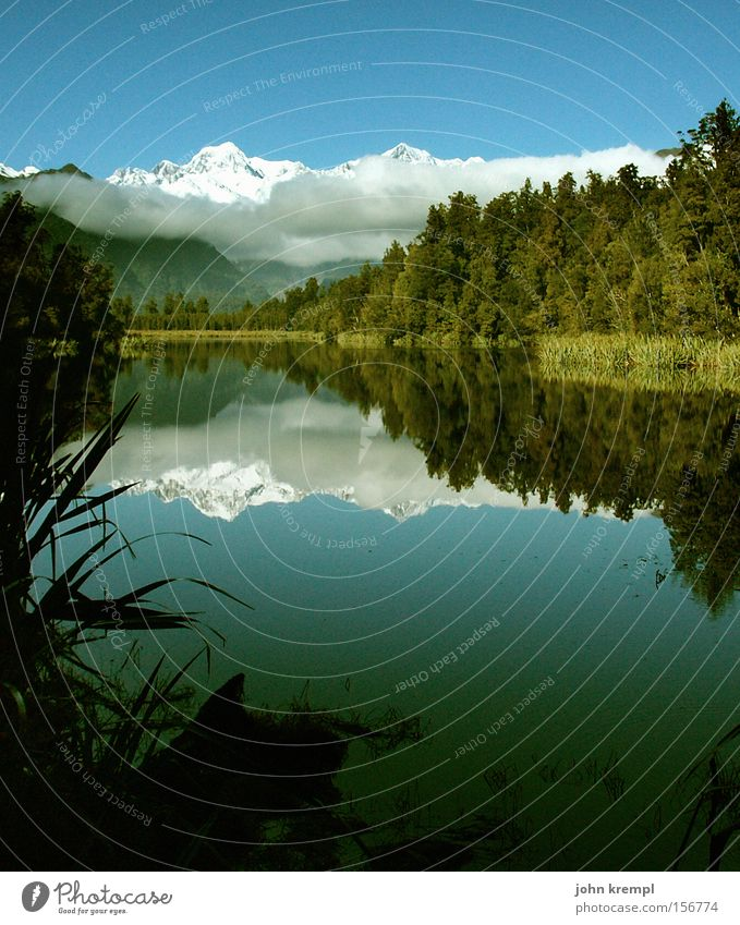 SEElenlandschaft Wasser grün Wald Schnee Berge u. Gebirge See Alpen Reflexion & Spiegelung Gletscher Neuseeland alpin Lake Matheson Mount Cook Fox Gletscher
