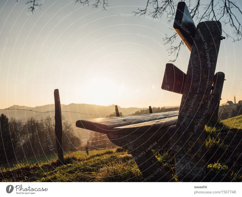 Enjoy the sunset Himmel Natur Ferien & Urlaub & Reisen Sonne Erholung Landschaft gelb Wärme Herbst Frühling Freiheit braun Stimmung träumen Feld wandern