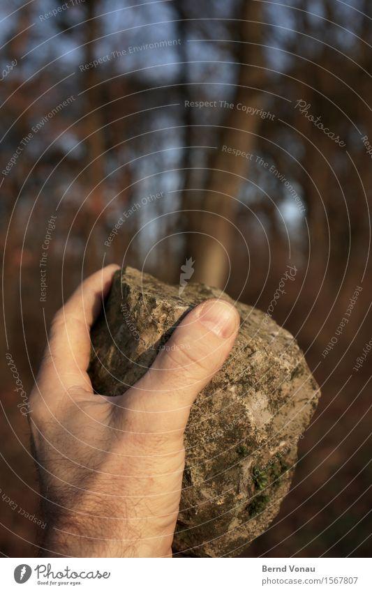 Härte Mensch maskulin Hand Finger 45-60 Jahre Erwachsene Gefühle heben Gewalt Stein werfen schwer Baum hart kalt Sonnenlicht wehren braun grau blau drohen