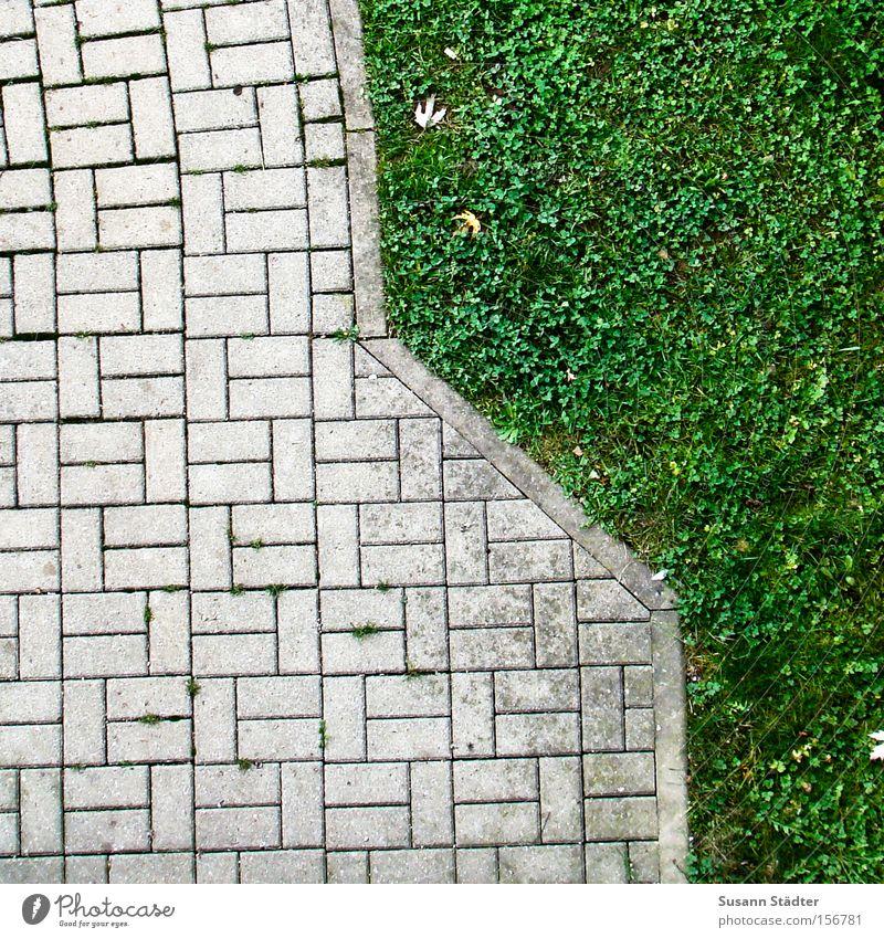 Grünstreifen grün Wiese Wege & Pfade Stein Blühend Hof Müll trist normal Langeweile Linie gerade Wachstum wild Verkehrswege einheitlich strange