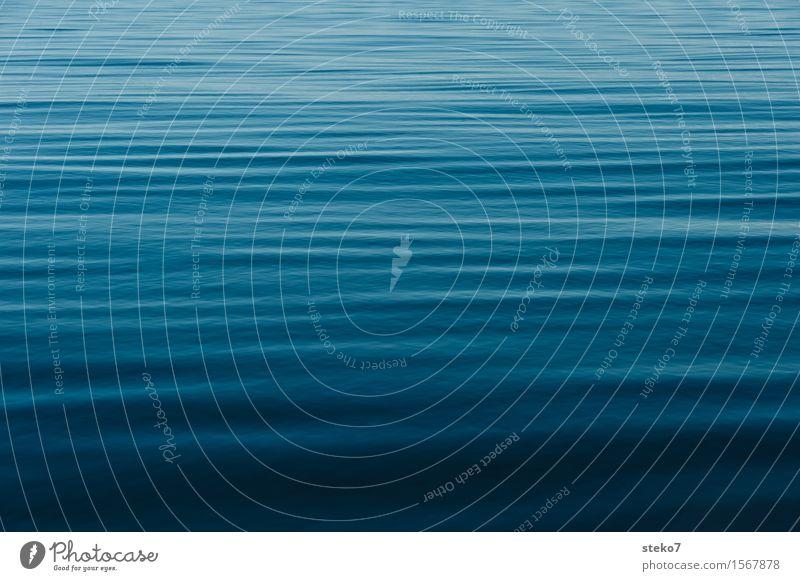 Belag der Magellanstrasse blau Farbe Wasser Meer Erholung ruhig Ferne weich Unendlichkeit sanft Windstille