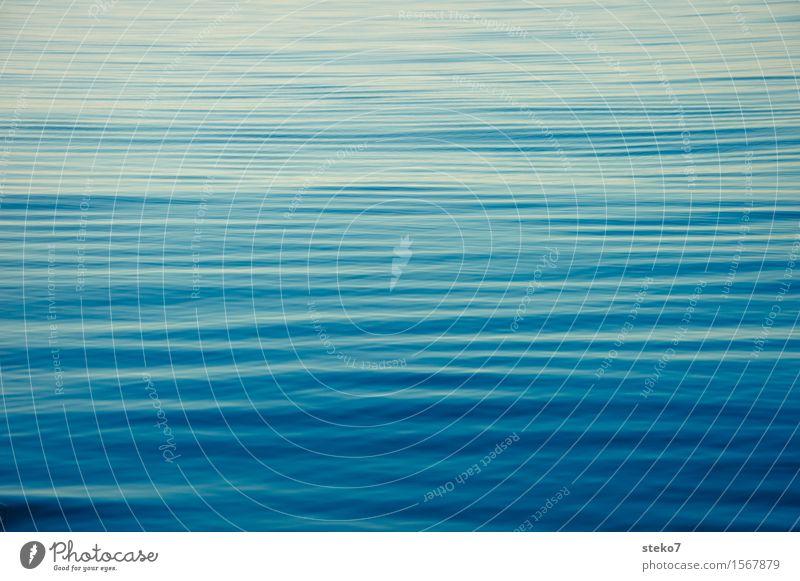Belag der Magellanstrasse Schönes Wetter Meer Pazifik Unendlichkeit weich blau ruhig Windstille Erholung Außenaufnahme Menschenleer Textfreiraum links