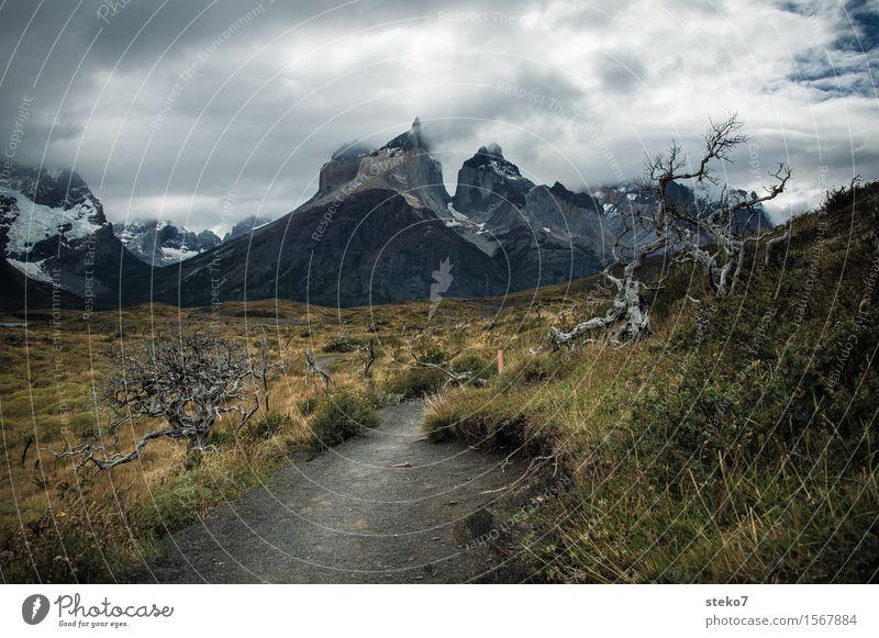 Torres del Paine Wolken Wind Berge u. Gebirge Torres del  Paine bedrohlich dunkel Wege & Pfade Torres del Paine NP Patagonien Wetterumschwung Menschenleer