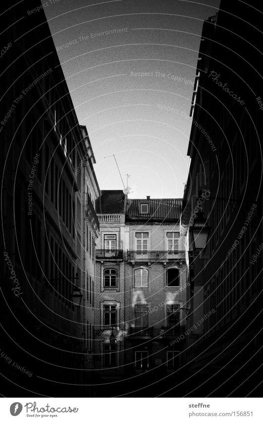 Häuserschlucht Lissabon Portugal Gasse Haus Jugendstilhaus historisch Tourist Ferien & Urlaub & Reisen südländisch Licht Altstadt Schwarzweißfoto