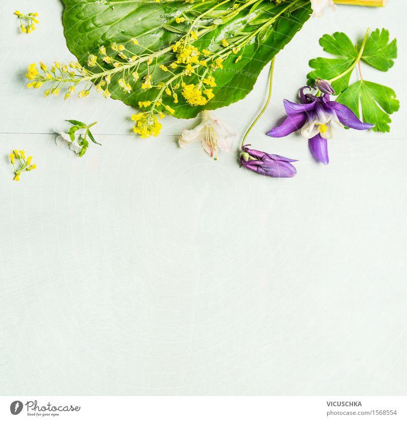 Frühling oder Sommer Garten Blumen mit Blättern Stil Design Häusliches Leben Dekoration & Verzierung Tisch Natur Pflanze Gras Blatt Blüte Blumenstrauß Blühend