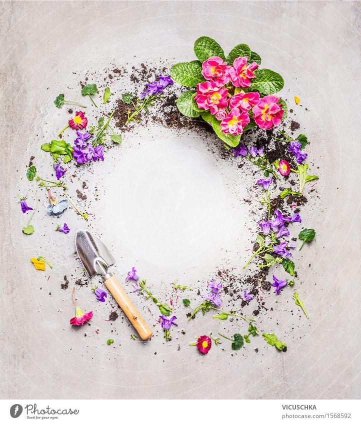 Runde Rahmen mit Schaufel und Gartenblumen Natur Pflanze Sommer Blume Blatt Blüte Frühling Hintergrundbild Stil Design Häusliches Leben Erde