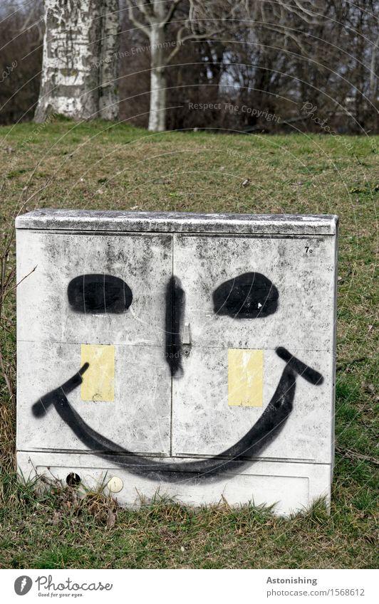 bright smile II Gesicht Auge Nase Mund Umwelt Natur Landschaft Pflanze Baum Gras Park Wiese Hügel Wien Lächeln lachen leuchten Fröhlichkeit grau grün Gefühle