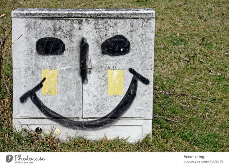 bright smile I grün Landschaft Freude schwarz Gesicht Umwelt Auge Wiese Gras lachen Glück Kunst grau Zufriedenheit leuchten Fröhlichkeit