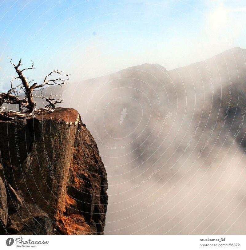 The Fog Himmel Sonne Berge u. Gebirge Holz Stein Felsen Nebel Erde Ast Bergsteigen Blauer Himmel Vulkan Wasserdampf Bergkette Klettern