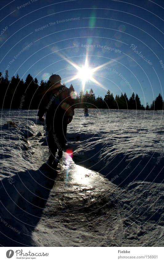 Winterspaß Mensch Frau Himmel Natur Baum Sonne Freude Landschaft Schnee Eis Frost Spuren Harz Flocke
