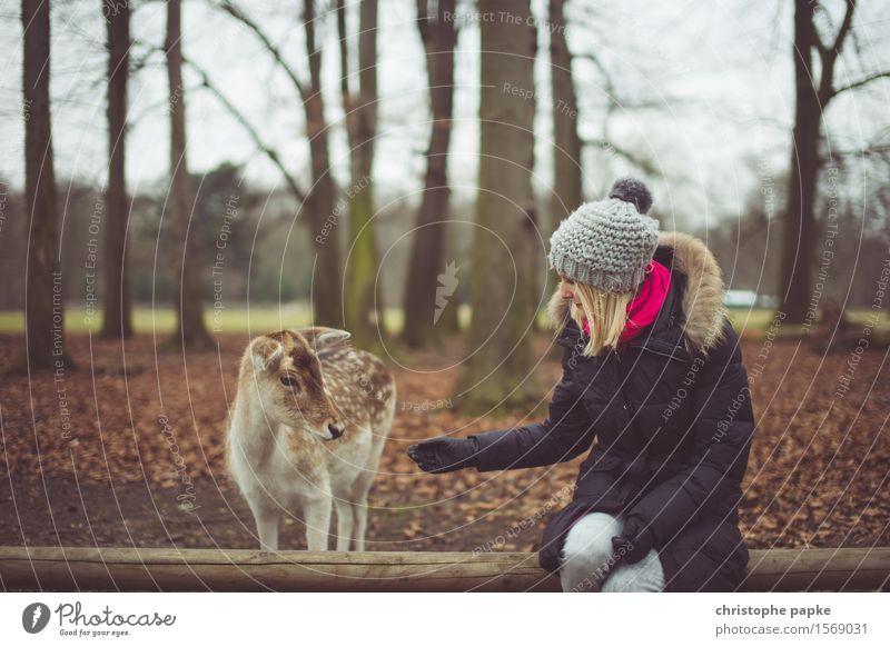 Anfüttern Mensch Frau Natur Jugendliche Junge Frau Baum Tier 18-30 Jahre Wald Erwachsene Herbst Park Wildtier blond sitzen beobachten