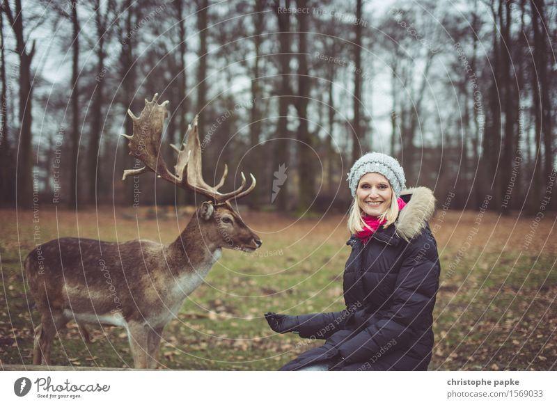 alles frei im Geweih? Junge Frau Jugendliche Erwachsene 1 Mensch 18-30 Jahre Natur Herbst Baum Park Wald Mantel Mütze blond Tier Wildtier Fell Zoo Streichelzoo