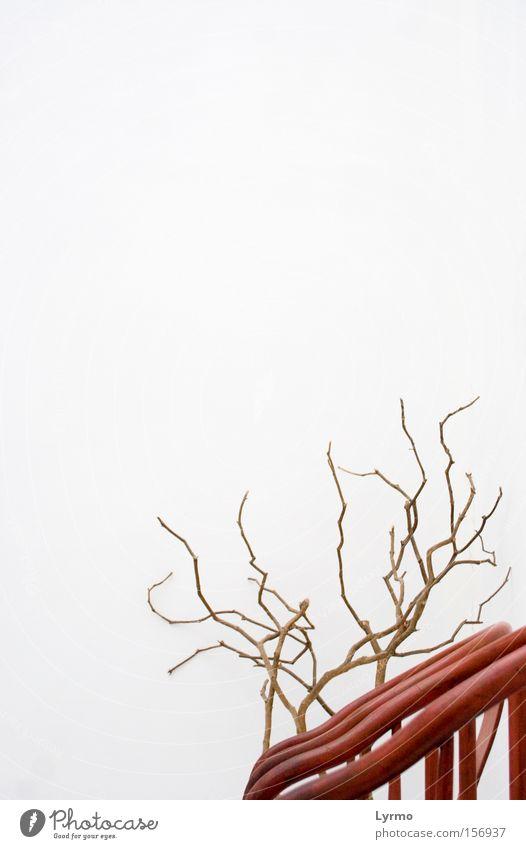 Moderne Begenung Erholung ruhig Stuhl Natur Holz rot weiß Einsamkeit Stillleben begegnen Verabredung clean einsasm Kontrast