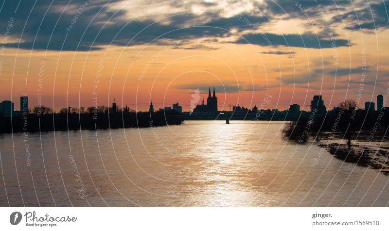 Es fließt viel Wasser... Winter Flussufer Köln Stadt Hafenstadt Stadtzentrum Skyline Haus Hochhaus Kirche Dom Brücke Bauwerk Gebäude Architektur