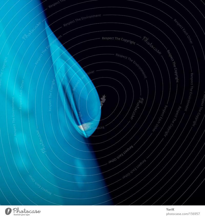 wet blue Wassertropfen Tropfen nass feucht Makroaufnahme Detailaufnahme blau Kontrast schwarz Reflexion & Spiegelung Glas Flasche Nahaufnahme