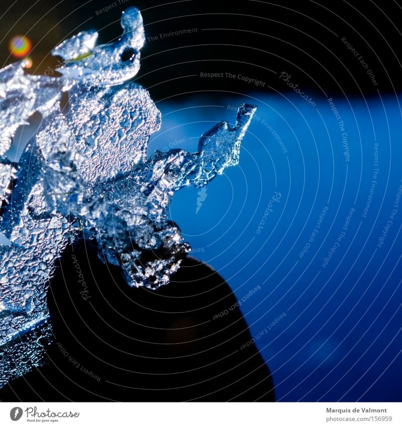 Gefrorene Tränen trocknen erst im Frühling Wasser Winter kalt Eis bizarr Kristallstrukturen