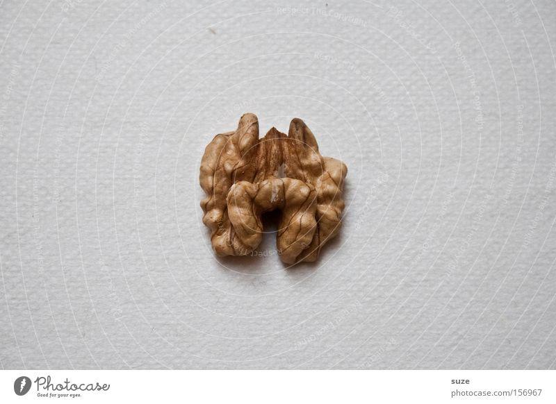 Großhirn Lebensmittel Ernährung Bioprodukte Vegetarische Ernährung Diät Fasten Zeichen einfach Gesundheit klein lecker trocken Idee Walnuss Nuss lustig spaßig