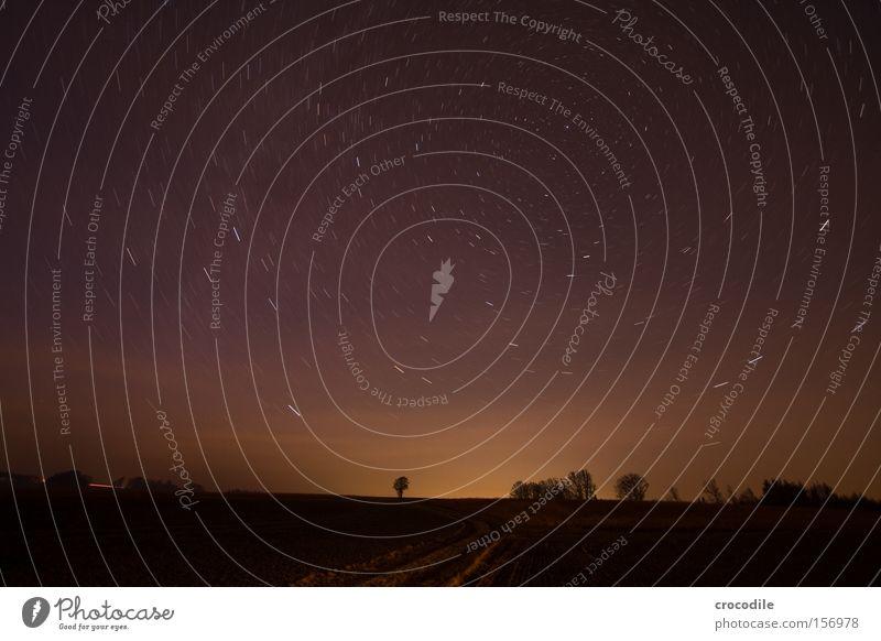 Sternenhimmel Planet Flugzeug Gaswolke Baum Sternschnuppe Nacht dunkel Dämmerung Milchstrasse Tierkreiszeichen Langzeitbelichtung Winter Frieden Lampe Erde