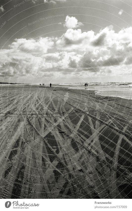 Im Land der heißen Hunde. Natur schön Himmel Meer Strand Ferien & Urlaub & Reisen Wolken Ferne Freiheit Sand Horizont Spuren Sehnsucht Reifen Stranddüne