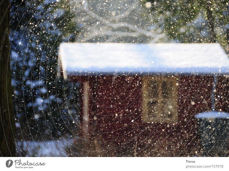 Leise rieselt der Schnee Farbfoto Außenaufnahme Menschenleer Tag ruhig Winter Schneefall Hütte Fenster Dach Romantik friedlich Frieden Märchen Schneelandschaft