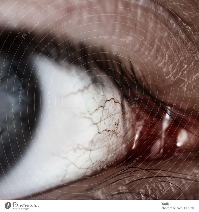 T-Virus weiß blau rot Auge Makroaufnahme Wimpern Gefäße Pupille Regenbogenhaut