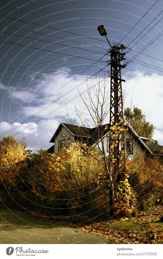 Herbsttag Natur schön Himmel Baum Blatt Haus Leben Landschaft ästhetisch Häusliches Leben Vergänglichkeit Idylle Jahreszeiten Strommast Osten