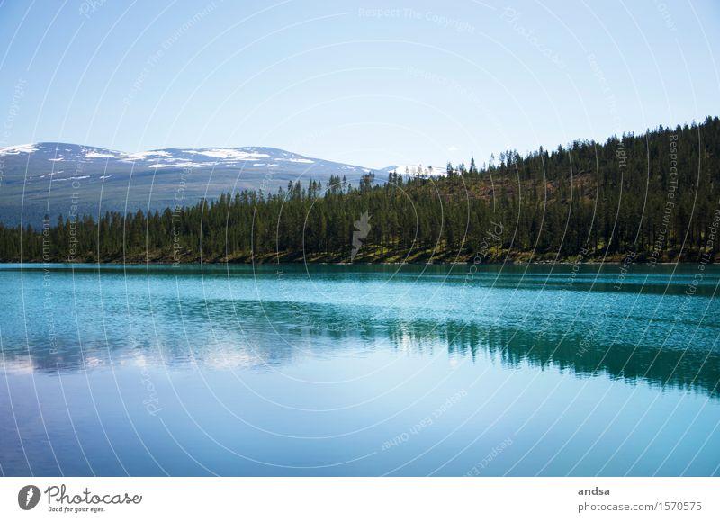 Norwegen Himmel Natur Ferien & Urlaub & Reisen Sommer Landschaft Ferne Wald Berge u. Gebirge Küste Freiheit Felsen frei wandern Ausflug Warmherzigkeit Schönes Wetter